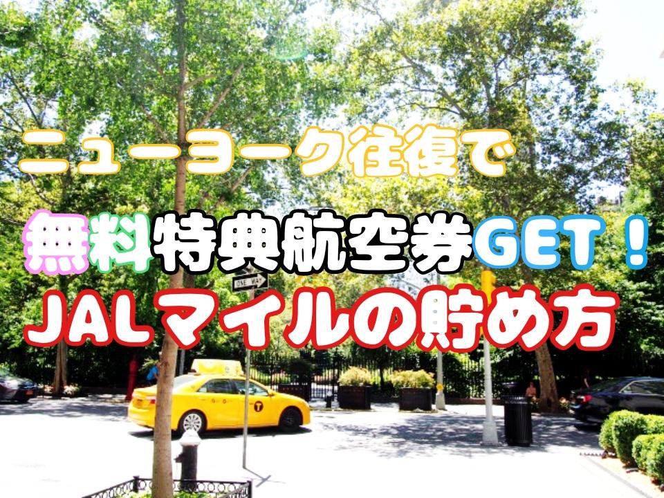 【長距離路線】JALカードを作ってマイルを貯める!簡単裏技紹介!