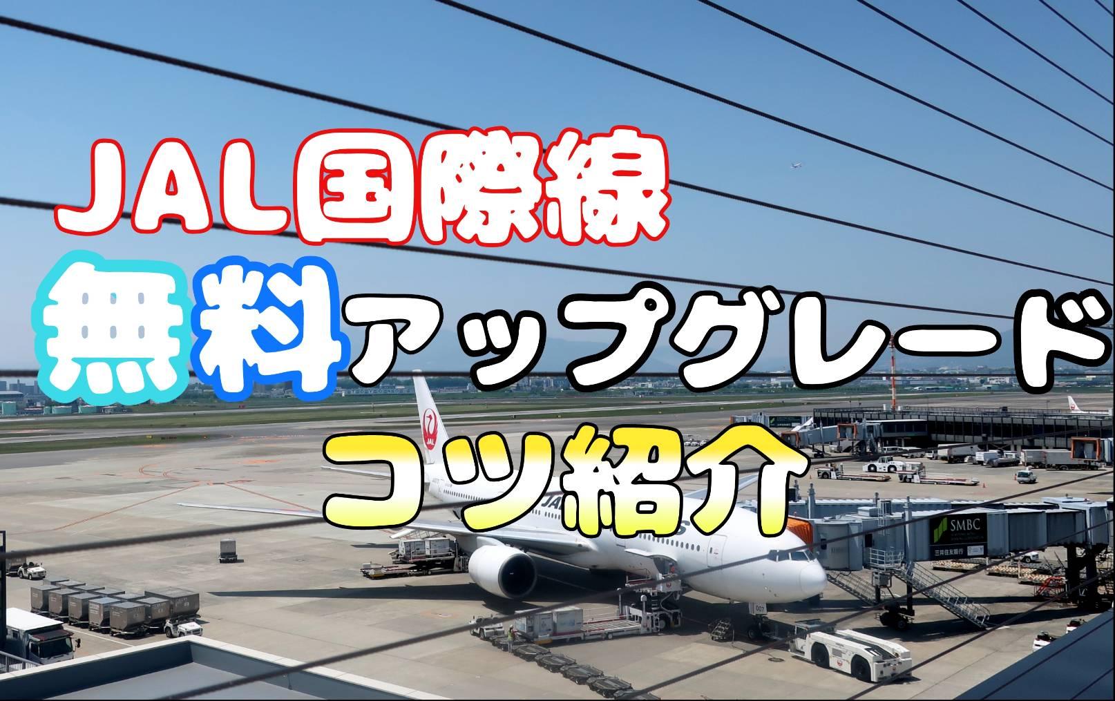 【JAL】無料アップグレードを3回してもらったコツを紹介【国際線】